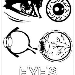 eyes coloring picture