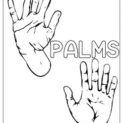 Palms coloring picture