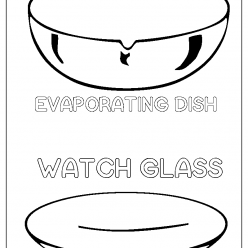 watch glass evaporating dish coloring picture